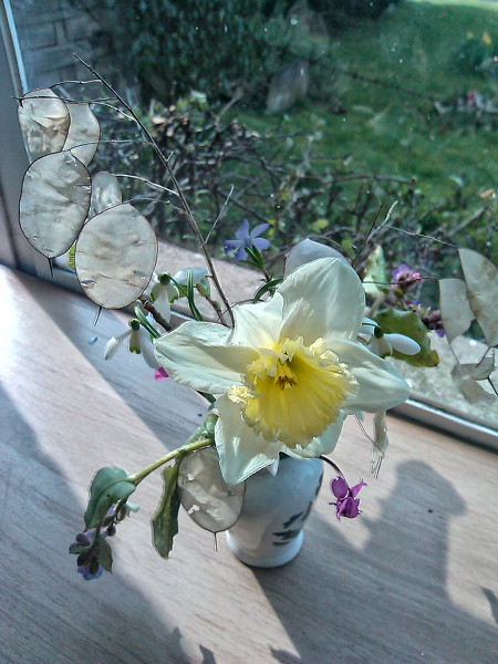 Flowers for March 13 2016